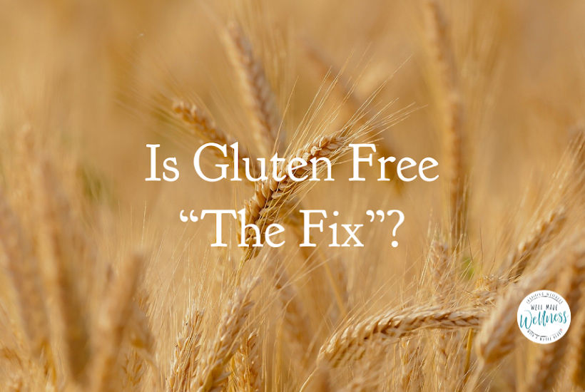 Is gluten free the fix - the gluten you buy is not the gluten you grind